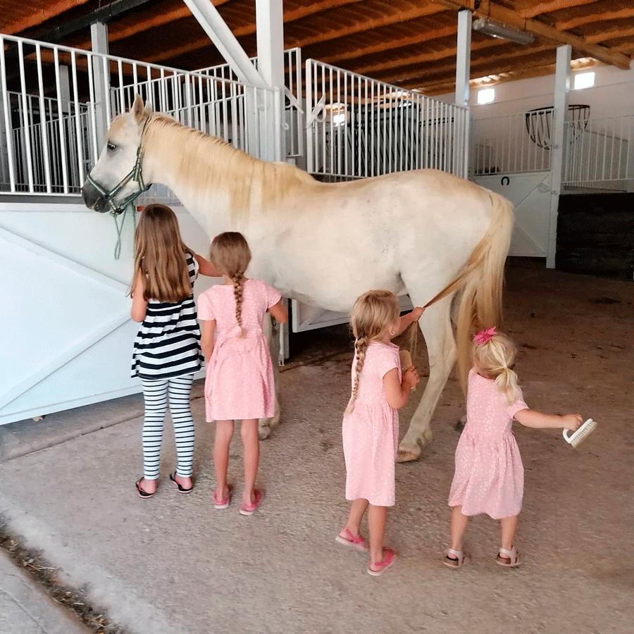 niños caballos hotel