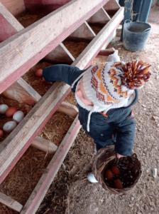 niños granja hotel sevilla